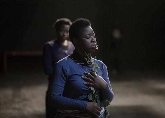Projet Métamorphoses de l'association Why théâtre